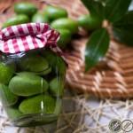 olive-verdi_06