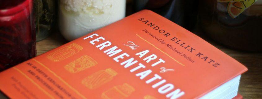Preparare delle perfette verdure fermentate? Ecco l'articolo che fa per voi!